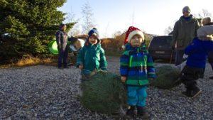 2 drenge med fæld selv juletræ